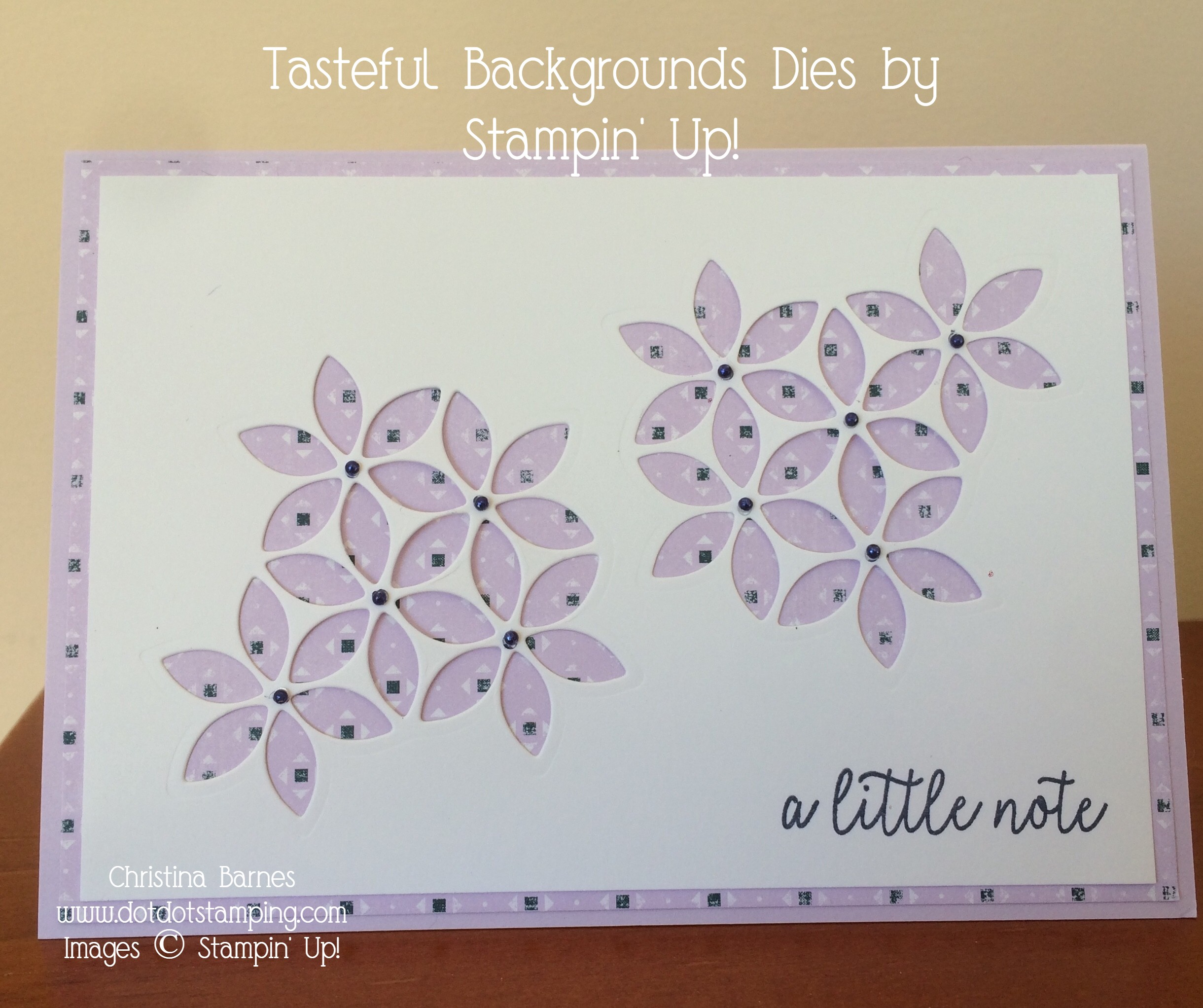 Tasteful Backgrounds Daisies Card