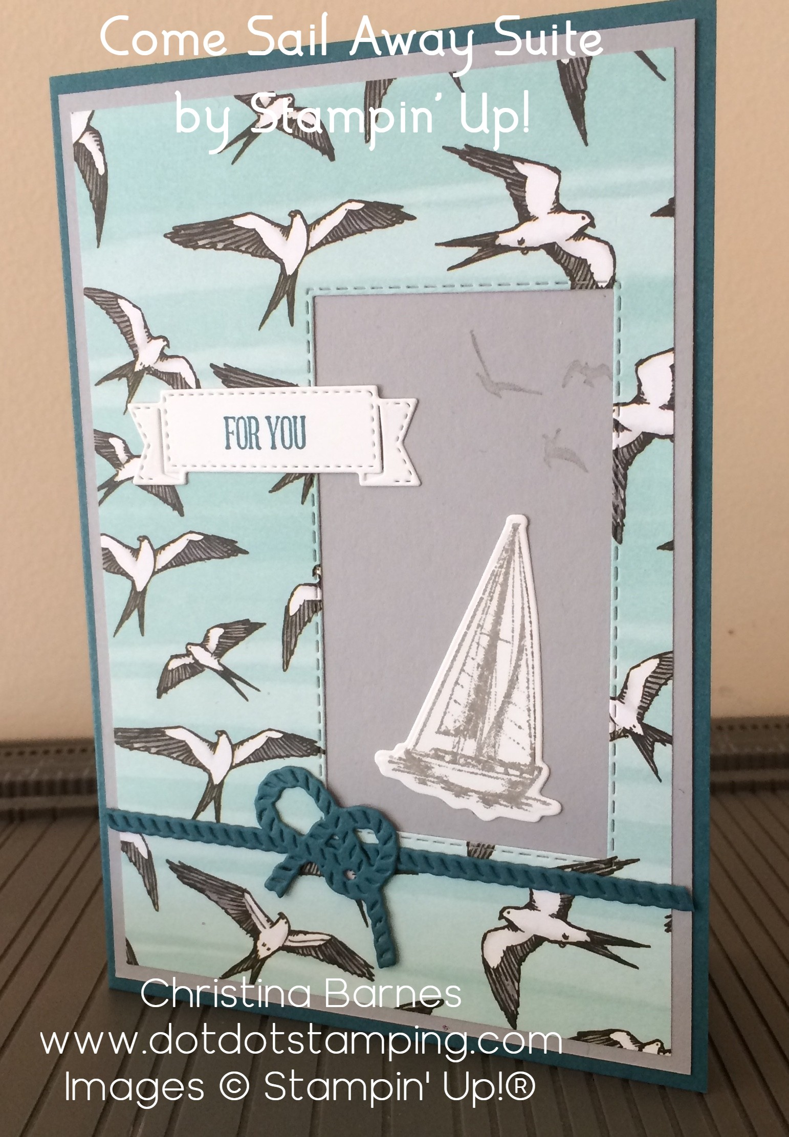 Sailing with Birds Card