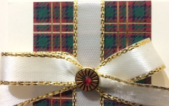 Wrapped in Plaid DSP Christmas Card Christina Barnes Dot Dot Stamping