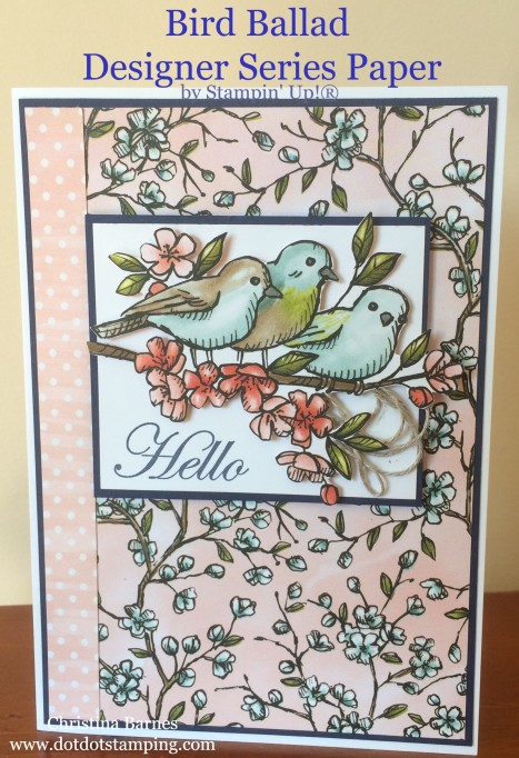 Bird Ballad Designer Series Paper Card 1 Stampin' Up! 2019 Annual Catalogue Christina Barnes Dot Dot Stamping