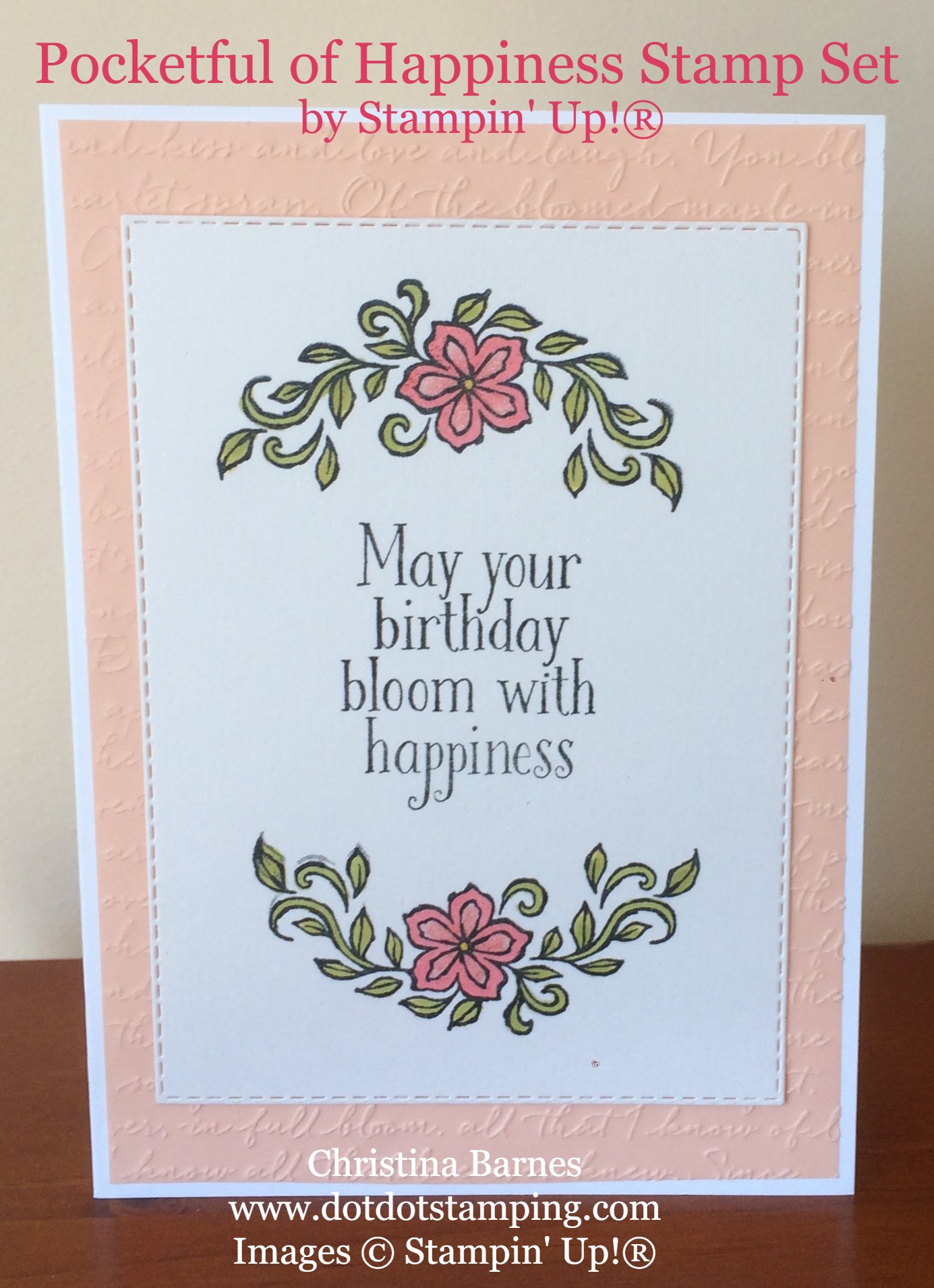 Pocketful of Happiness Card Scripty Embossing Folder Stitched Rectangle Dies Stampin' Up! 2019 Annual Catalogue Christina Barnes Dot Dot Stamping