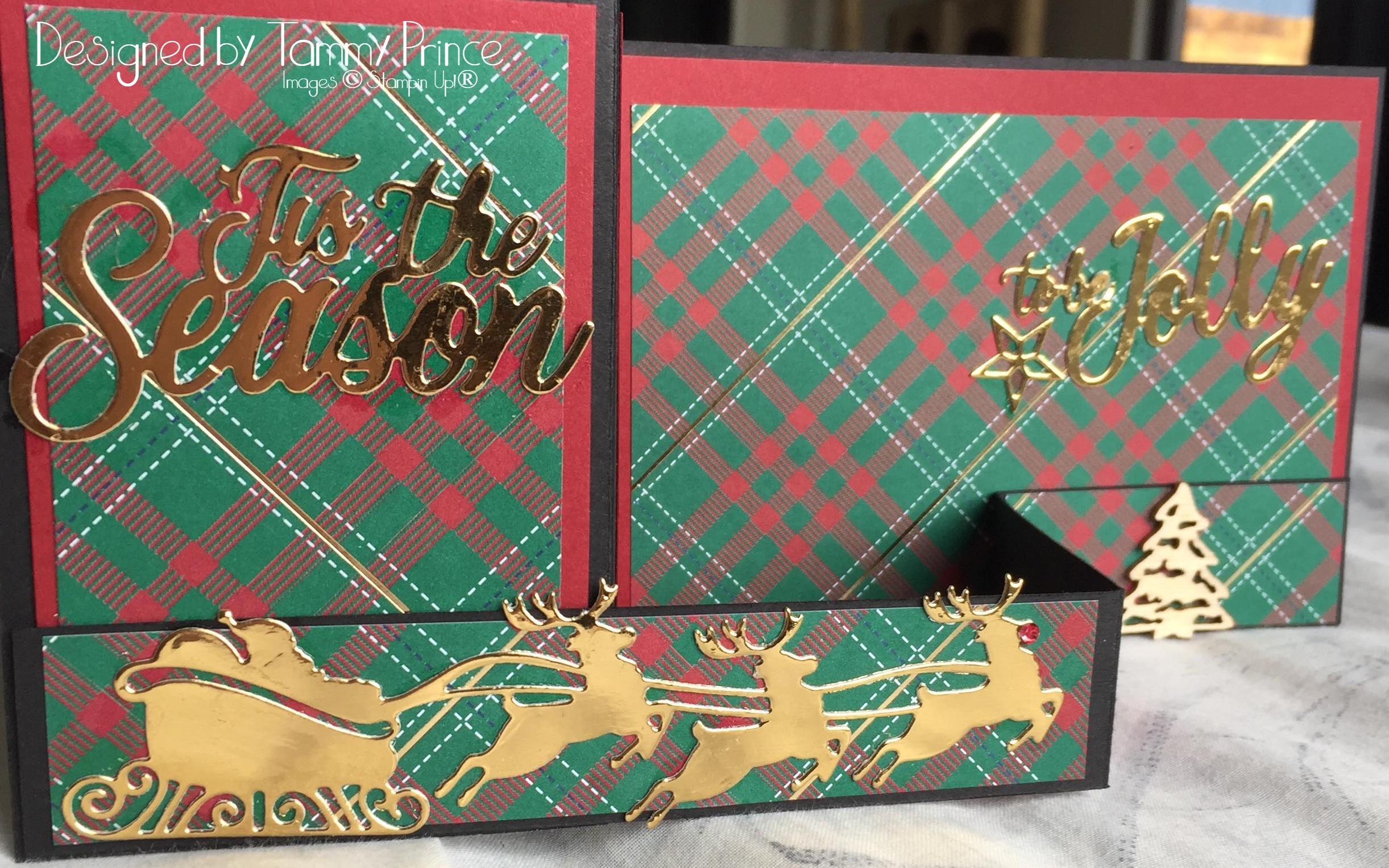 Tammy Prince Fancy Fold Card