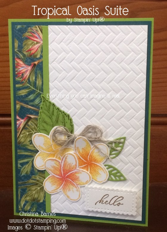 Tropical Oasis Card by Christina Barnes Timeless Tropical Coastal Weave Embossing Folder Dot Dot Stamping