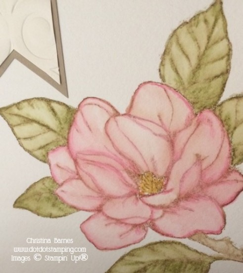 Watercoloured Magnolia 3 Pencils Stampin' Up! 2020 Christina Barnes Dot Dot Stamping