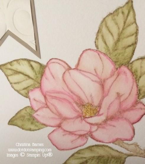 Watercoloured Magnolia 3 Pencils Stampin' Up! 2020 Christina Barnes Dot Dot Stamping